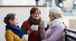 Kvinnor som har te på terrass Royaltyfri Bild