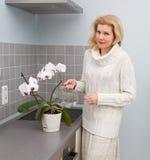 Kvinnor som lagar mat mat på kök Fotografering för Bildbyråer