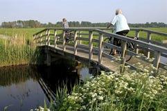 Kvinnor som rider cykeln i polderlandskap royaltyfria bilder