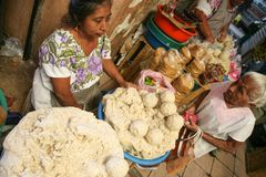 Kvinnor som säljer majsgough för tortillor på en lokal marknad i mig Royaltyfria Bilder