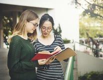 Kvinnor som talar kamratskap som studerar idékläckningbegrepp Royaltyfria Bilder