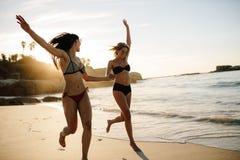 Kvinnor som tycker om på strandsemester arkivfoto