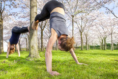 Kvinnor som öva yoga Royaltyfri Bild