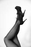 Kvinnors ben Fotografering för Bildbyråer