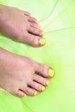 Kvinnors ben med trevligt spikar (pedikyren) Arkivfoto