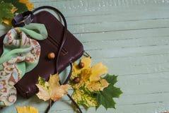 Kvinnors brun läderhandväska, siden- halshalsduk, armband och gulinglönnlöv Fotografering för Bildbyråer