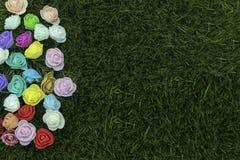 Kvinnors dag 2018 Grupp av blommor på gräs Royaltyfria Foton