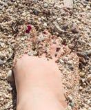 Kvinnors sandiga fot på stranden Arkivbilder