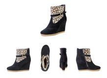 Kvinnors sko-, leopardsko-, höst- och vinterkängor Royaltyfri Foto