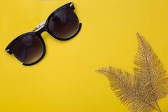 Kvinnors solglasögon och två bladguld av en palmträdlögn på en gul bakgrund arkivbild