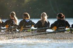 Kvinnors Teams Rows Down Atlantas för högskolabesättning Chattahoochee River arkivbild