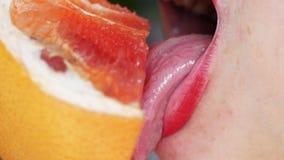 Kvinnors tunga slickar en grapefrukt Stående av en flicka med ljusa röda kanter som slickar en rosa grapefrukt close upp lager videofilmer