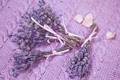 Kvistar av lavendel Royaltyfria Bilder