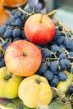 Kvitten med äpplen och druvor Royaltyfri Bild