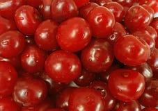 Kwaśnej wiśni owoc zamknięty up Zdjęcie Royalty Free
