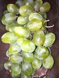 kwaśne winogrona Obrazy Royalty Free