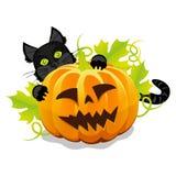 Kwade Halloween-pompoen en zwarte kat Royalty-vrije Stock Foto