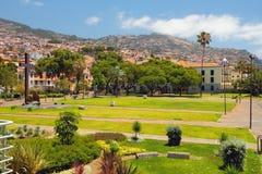 Kwadrat i miasto na zboczu funchal Madeira Portugal Obraz Stock