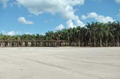 Kwadrat w Higüey zdjęcie royalty free