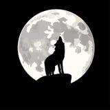 Kwadratowa ilustracja wy przy księżyc wilk. Obrazy Stock