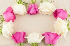 Kwadratowa rama robić od różowych i białych róż obraz stock