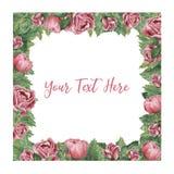 Kwadratowa rama robić różowe kwitnące róże royalty ilustracja