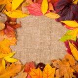 Kwadratowa rama w jesień stylu Zdjęcia Stock
