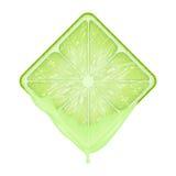 Kwadratowy plasterek wapno z świeżym sokiem Zdjęcie Stock