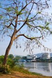 河Kwai 免版税库存图片