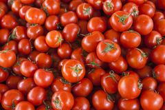 Kwalitatieve achtergrond van tomaten Verse tomaten Rode tomaten De organische tomaten van de dorpsmarkt Stock Foto