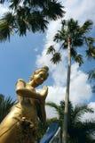 Kwan-yin. A Kwan-yin bodhisattva statuary in Thailand Royalty Free Stock Photo