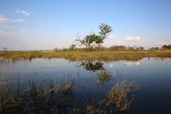 Kwando River. Caprivi Strip. Namibia Royalty Free Stock Image