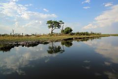 Kwando River Stock Photography
