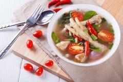 Kwaśni i korzenni kurczaków cieki zupni Obrazy Royalty Free