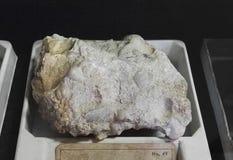 Kwarcowe zlepione osadowe skały obraz royalty free