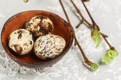 Kwartels verse organische eieren in een ceramische komclose-up Stock Foto's