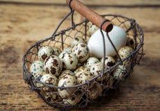 Kwartelseieren en Duck Egg stock foto