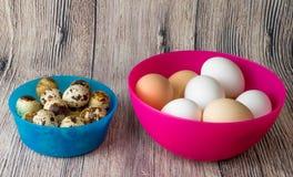 Kwartelseieren en kip voor het feest van Pasen voor het kleuren Royalty-vrije Stock Foto