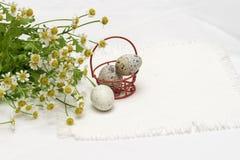 Kwartelseieren in rode metaalmand en verse bloemen, madeliefjes, licht rustiek servet, hoogste mening Concept voor Pasen, de lent royalty-vrije stock afbeeldingen