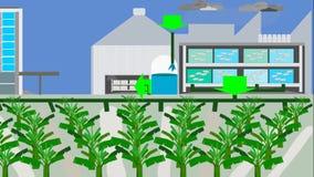 Kweken van vis en banaan installaties in Geïntegreerde recyclingssystemen royalty-vrije illustratie