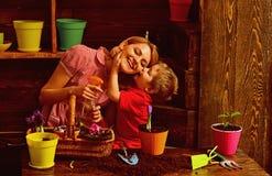 Kwiaciarni poj?cie Ma?e dziecko buziaka kwiaciarni kobiety opryskiwania kwiat Domowa kwiaciarnia przy prac? Kwiaciarnia sklep zdjęcie stock