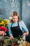 Kwiaciarni rozcięcie suszył płatki kwiaty z nożycami obrazy royalty free