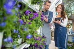 Kwiaciarnia Patrzeje Żeńskiego kolegi Używa pastylkę Zdjęcia Royalty Free