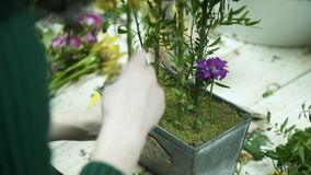 Kwiaciarnia wkłada trzony żółci kwiaty w metalu pudełko zbiory wideo