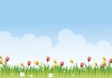 kwiaciasta łąki obraz stock