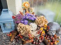 Kwiaciasta jesienna dekoracja Fotografia Stock