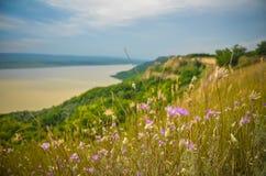 Kwiaciasty zmierzch panoramy wsi rzeki zieleni lato Rumunia Obraz Stock