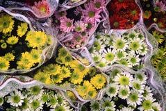 Kwiatów bukiety Zdjęcia Stock