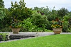 Kwiatów garnki & granicy, Tintinhull ogród, Somerset, Anglia, UK zdjęcie royalty free