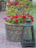 Kwiatów garnki, lampy Fotografia Stock